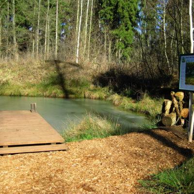 Teich am Naturpfad Wildtierstation Sachsenhagen