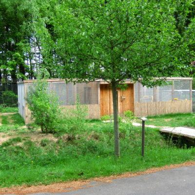 Zuchtgehege Nerze Wildtierstation Sachsenhagen
