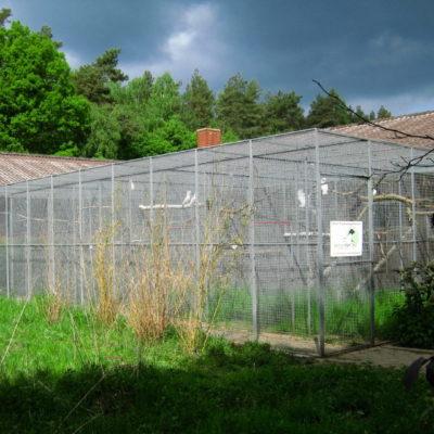 Papageien Aussenvoliere Wildtierstation Sachsenhagen