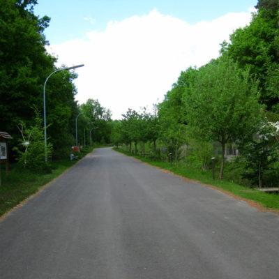 Weg zu den Bunkern Wildtierstation Sachsenhagen