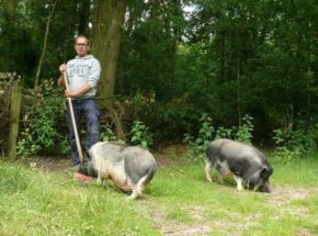 Schweinestall erster Spatenstich